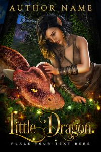 premade covers. fantasy category. www.premadebookcoversmarket.com