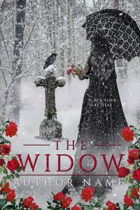 premade covers. fantasy, historical fiction category. www.premadebookcoversmarket.com